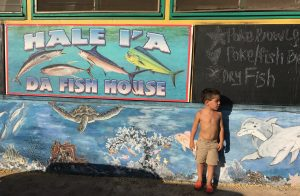 dafishhouse